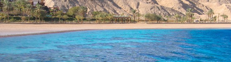 738X200 Red Sea salts Red Sea view banner